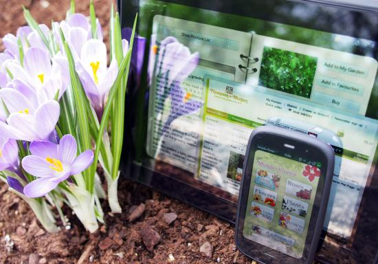 webOS apps for the Spring